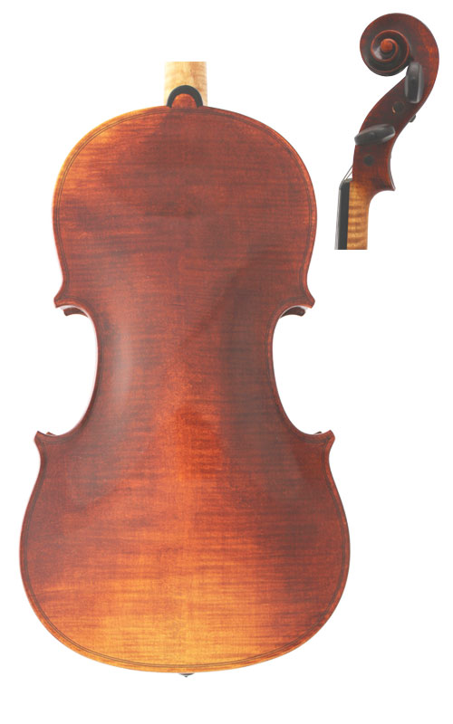 Wessex M Violin Back & Scroll