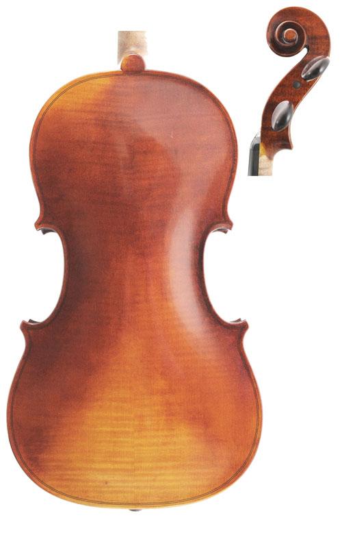 Wessex XV Viola Back & Scroll