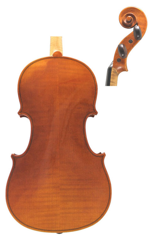 Wessex V Violin Back & Scroll