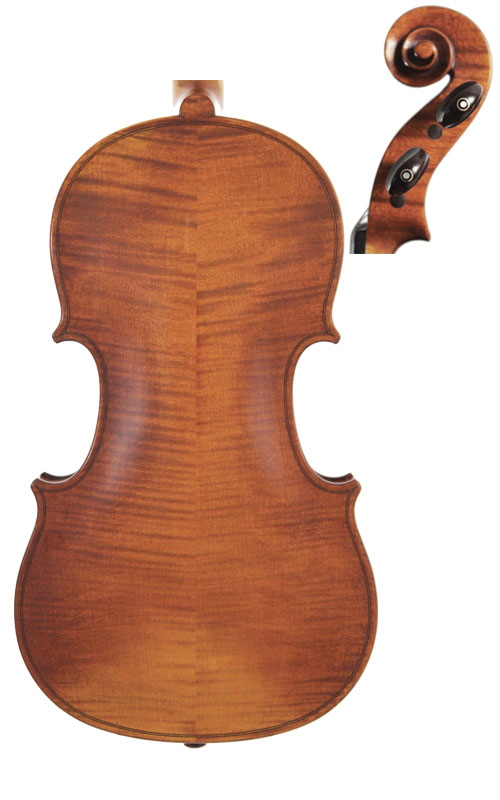 Wessex XV Violin Back & Scroll