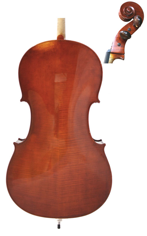 Wessex XVI Cello Back & Scroll